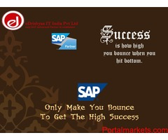 SAP training for SAP endusers with hi paid jobs