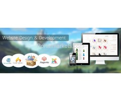 Top Web Development Company in Jaipur - Dice Infocom