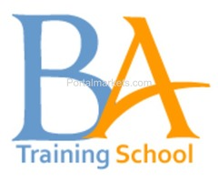 Business Analyst job - instructor-led-online training with 2 realtime projects
