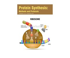 Protein Synthesis: Methods and Protocols