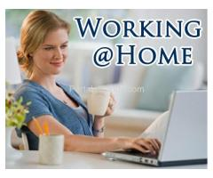 WORK FROM HOME JOBS FOR ALL: EARN DAILY INCOME IN $$$ USING PC OR MOBILE