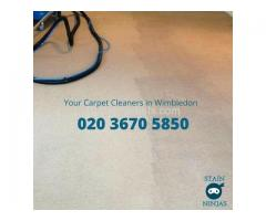 Carpet cleaning in Wimbledon