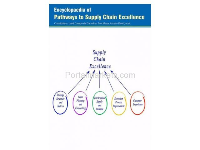 Encyclopaedia of Pathways to Supply Chain Excellence (3 Volumes) - 1/1