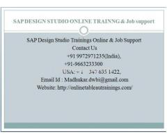 SAP Design Studio training for beginners