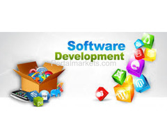 nts infotech web development
