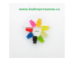 Buy Weed Edibles Online Canada from BudExpressNow.ca