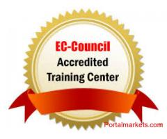IT Training/ Certifications/ Consulting
